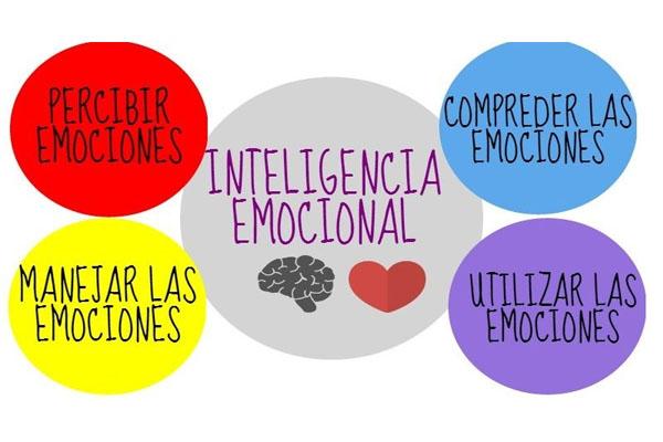 4 signos evidencian que tu inteligencia intelectual es alta